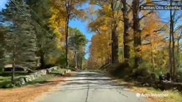 A nice drive through fall foliage