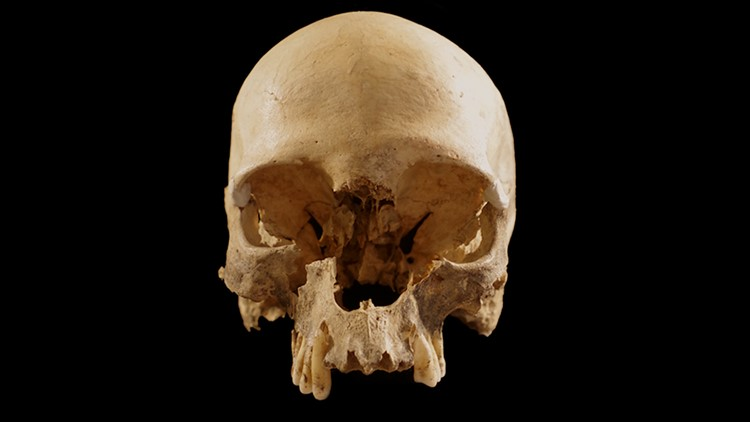 How Did This Mysterious Human Skull End up All Alone in a Cave in Italy?