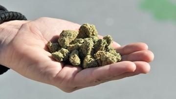 Weed wins the midterms: Michigan, Missouri, Utah legalize marijuana
