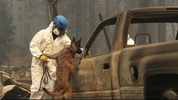 63 dead, 631 missing in Camp Fire; tens of thousands displaced