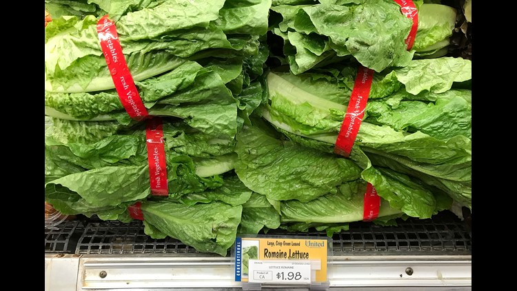 Coli in Arizona romaine sickens almost 150 people across 29 states
