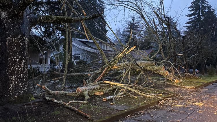 'Catastrophic destruction': More than 150,000 Oregon customers still without power