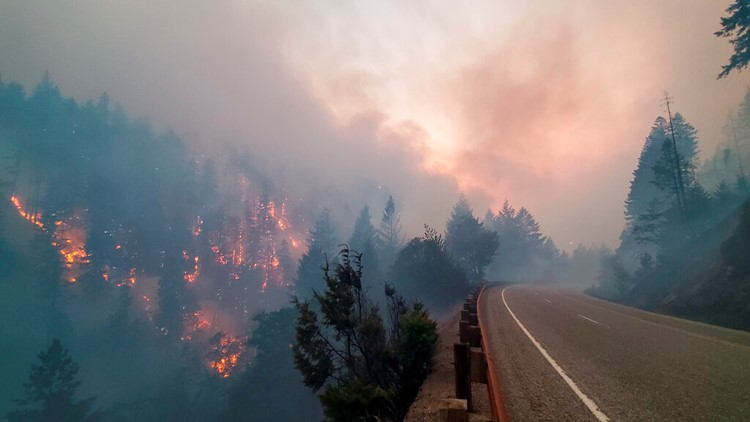 Why West Coast wildfires are a global problem