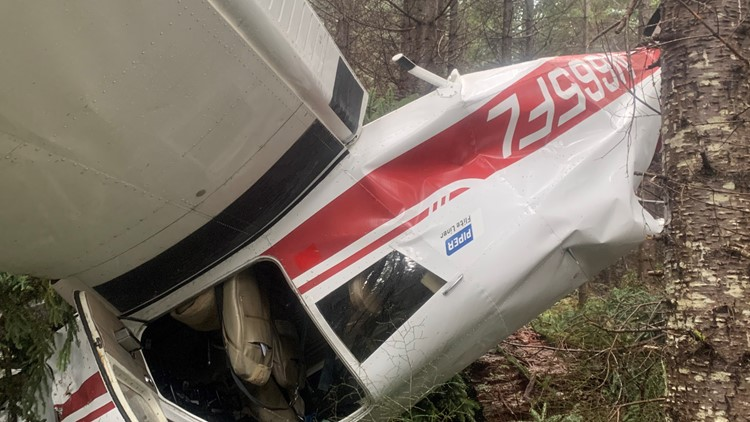 'You're ripping off the tops of the trees': Plane crash survivor describes plunging into Gifford Pinchot National Forest
