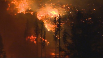 Wildfire 50 percent contained near Oso