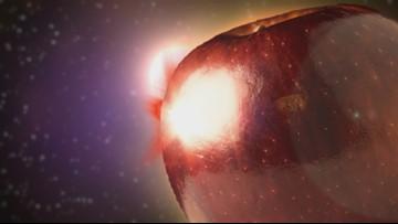 Inside WSU's creation of the Cosmic Crisp apple