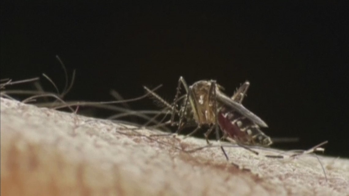 Get your bug spray out: Officials predict more mosquitoes in the Treasure Valley