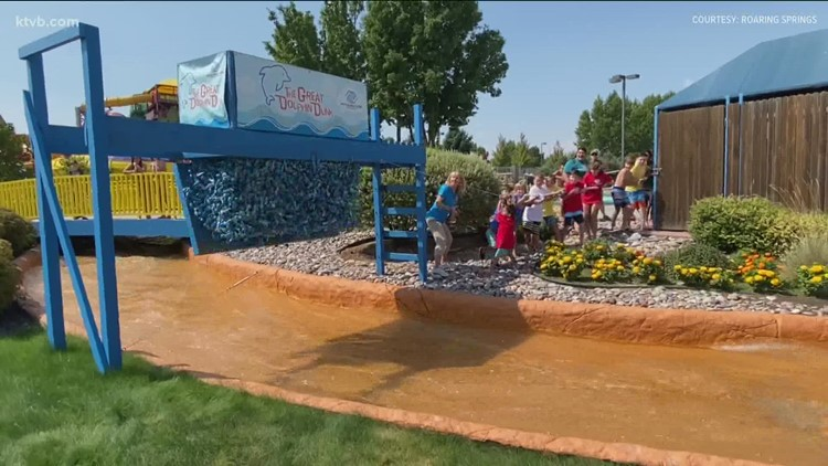 Great Dolphin Dunk raises $41,000 for Boys & Girls Clubs of Ada County in record-breaking year