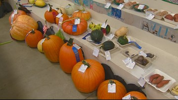 You Can Grow It: Amazing displays of fruits, flowers and vegetables at the Western Idaho Fair