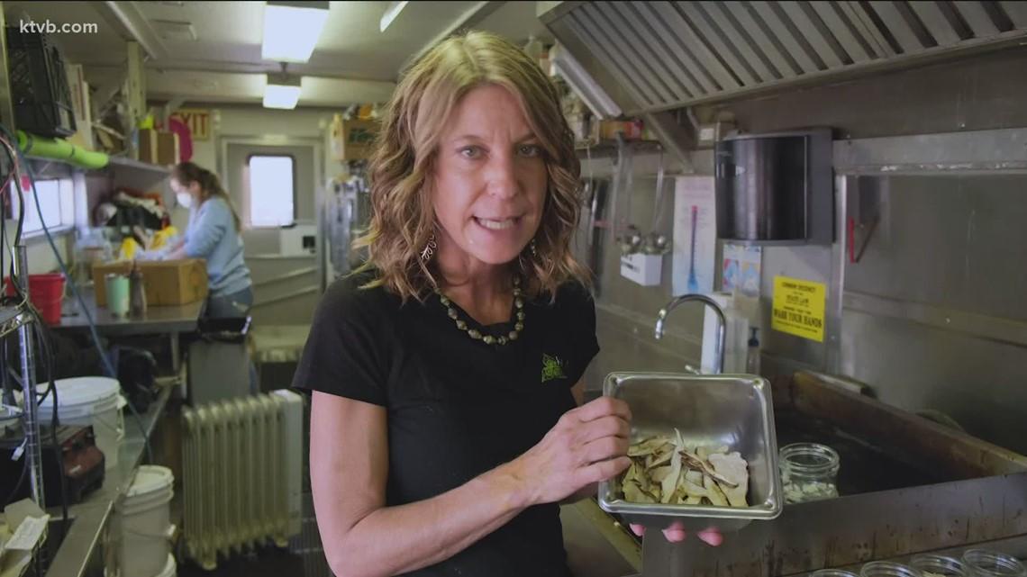 KTVB Kitchen with Chef Shelly: Mushroom Gravy