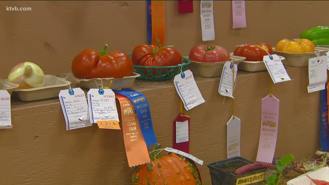 You Can Grow It: Big veggies and fruits for the Western Idaho Fair