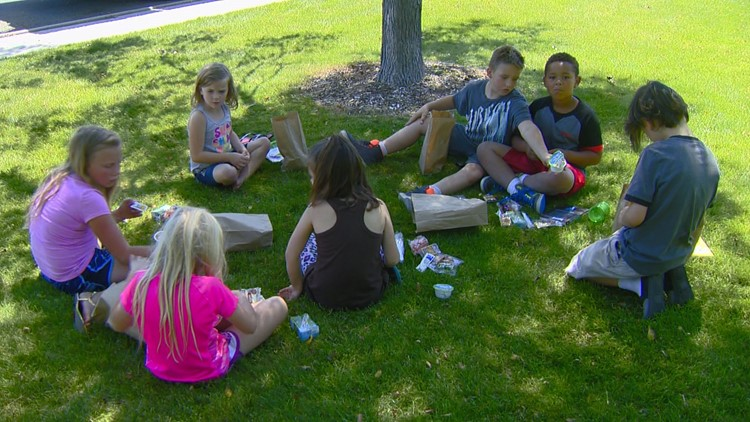 'PIKnic' program returning with free Sunday meals in Boise's Ann Morrison Park