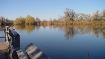 Renovation of Caldwell ponds to improve fishing conditions
