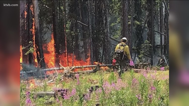 Rainstorms can do more harm than good when fighting wildfires, US Forest Service says