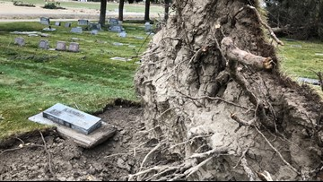 Wilder residents check one loved ones' headstones after uprooted trees damaged some