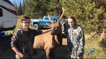 'Holy cow, that's Elliot': Friendly elk hangs out with hunters for 5 days in Bear Valley