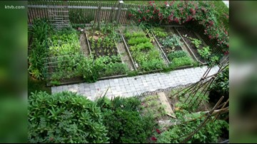 You Can Grow It: Time to start planning your garden