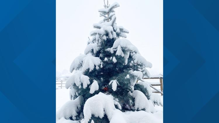 Nearly 9 inches of snow covers the Treasure Valley