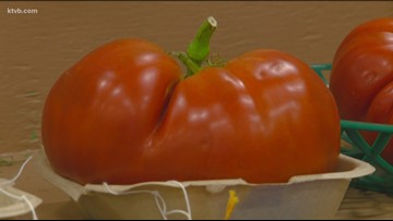 You Can Grow It: Western Idaho Fair has some of the best fruits and vegetables