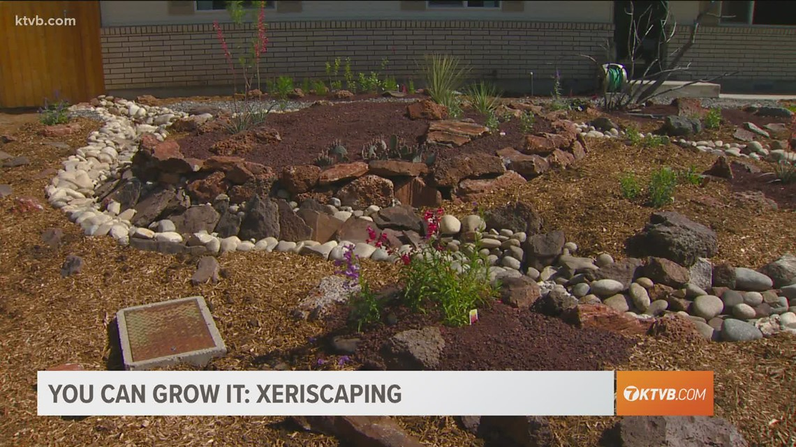 You Can Grow It: Xeriscaping to save water