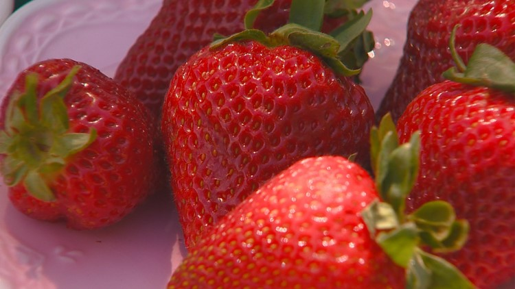 You Can Grow: Strawberries are in season