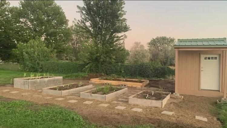 You Can Grow It: Volunteer gardens