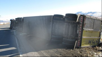 Driver cited for reckless driving after cattle truck flips on its side