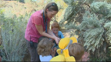 Boise Outdoor Preschool expands classes this fall