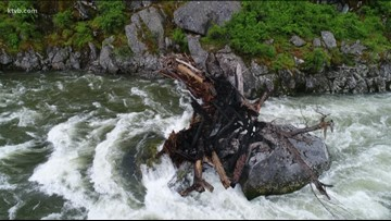 Logjam on the Payette River continues to make conditions for rafters and kayakers