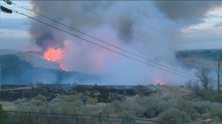 Goose Fire burns about 200 acres in the Boise Foothills