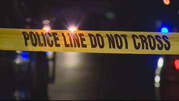 One dead, one jailed after early morning crime in Owyhee County