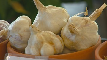 You Can Grow It: Planting garlic so it's ready for next spring