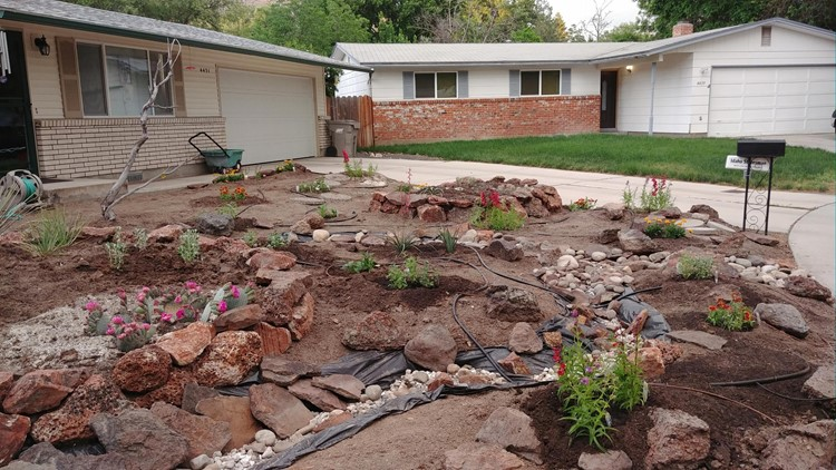 You Can Grow It: Saving water with xeriscaping