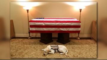 'Mission complete': George H.W. Bush's casket arrives in Washington D.C.
