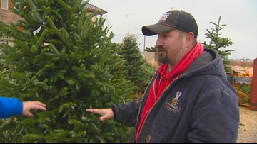You Can Grow It: Finding the perfect Christmas tree for your family