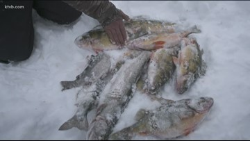 Inside an ice fishing expedition at one of the best Idaho lakes to try your luck