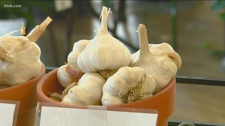 You Can Grow It: Garlic galore!