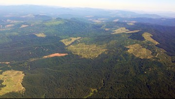 Idaho has enough money to buy 130,000 acres of timberland