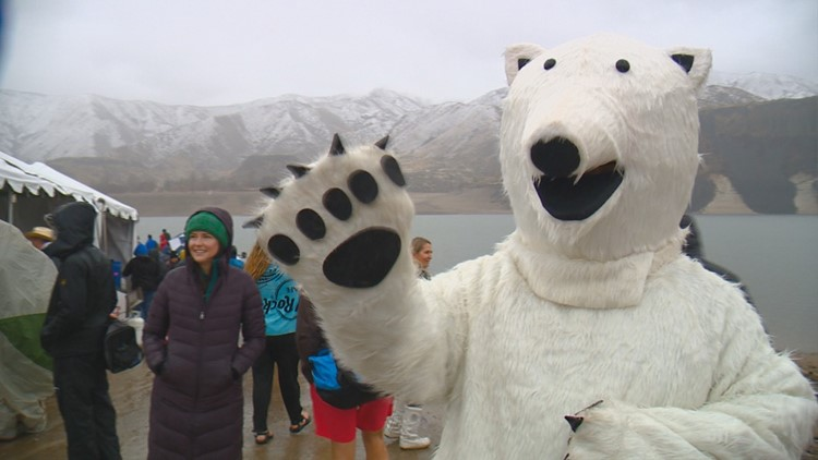Plunge your way into 2021 with the Great Polar Bear Challenge