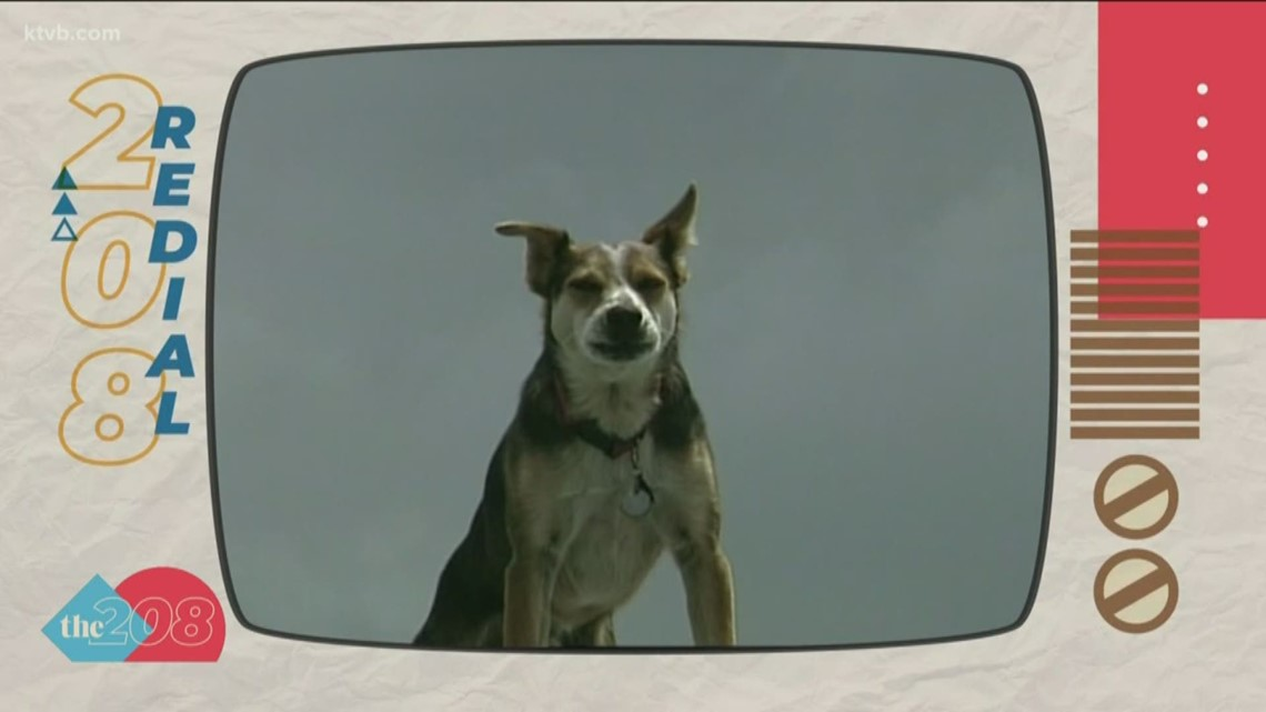 208 Redial: Idaho's Roof Dog