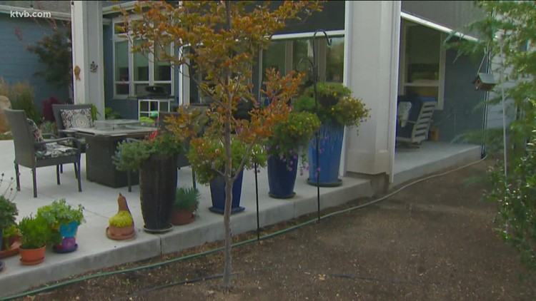 You Can Grow It: Plant doctor who makes house calls