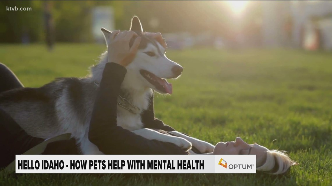 Hello Idaho: How owning a pet can benefit your mental health