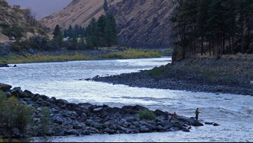 Beachgoers found human remains along the Salmon River in Idaho County