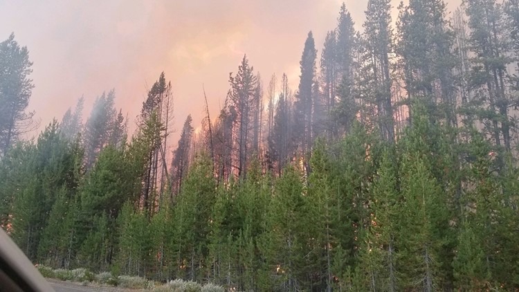Viewpoint: The state and feds collaborate to improve health of Idaho's forests
