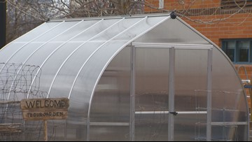 You Can Grow It: A greenhouse can extend your growing season