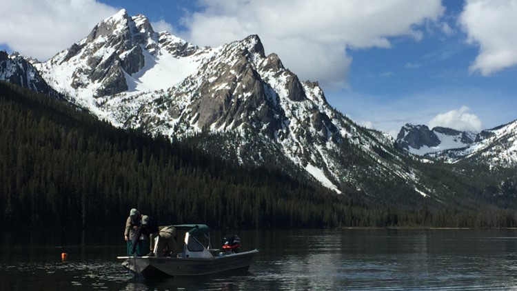 Idaho Fish and Game hires company to remove some trout from Stanley Lake