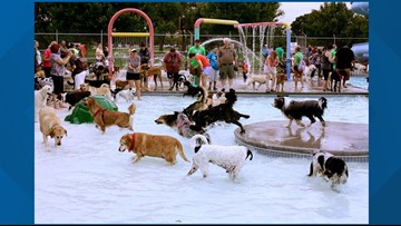 Pooch Party Stroll & Splash will raise money to support dog parks in Nampa