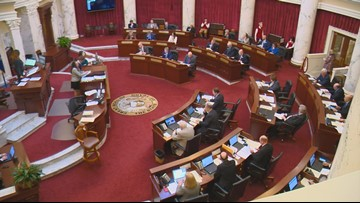 Idaho Senate votes 18-17 to send initiative bill to the House