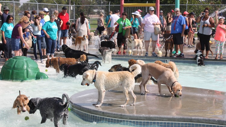 Pooch Party Stroll & Splash will raise funds to support dog parks in Nampa