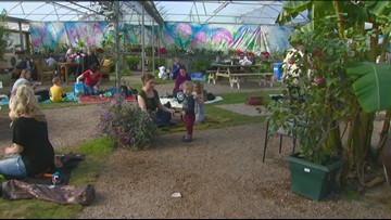 You Can Grow It: Enjoy spring in winter at Edwards Greenhouse's pop-up park